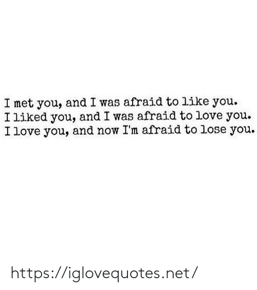 And Now: I met you, and I was afraid to like you.  I liked you, and I was afraid to love you.  I love you, and now I'm afraid to lose you. https://iglovequotes.net/