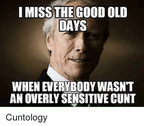 Memes, Cunt, and Good: I MISS THE GOOD OLD  DAYS  WHEN EVERYBODY WASNT  AN OVERLY SENSITIVE CUNT Cuntology