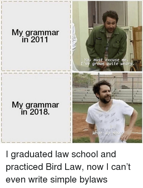 Memes, School, and Quite: i My arammar  in 2011  You must excuse me  I've grown quite weary.  My grammar  in 2018.  What do no I graduated law school and practiced Bird Law, now I can't even write simple bylaws