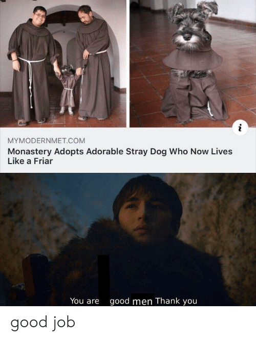 Thank You, Good, and Adorable: i  MYMODERNMET.COM  Monastery Adopts Adorable Stray Dog Who Now Lives  Like a Friar  You are  good men Thank you good job