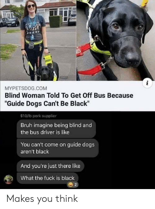 "Bruh, Dogs, and Black: i  MYPETSDOG.COM  Blind Woman Told To Get Off Bus Because  ""Guide Dogs Can't Be Black""  $10/lb pork supplier  Bruh imagine being blind and  the bus driver is like  You can't come on guide dogs  aren't black  And you're just there like  What the fuck is black  2 Makes you think"