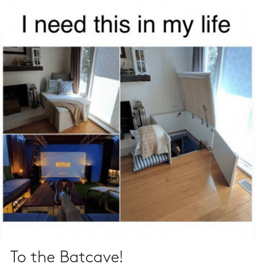 batcave: I need this in my life  ETFLIX To the Batcave!