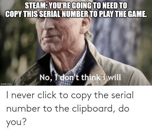 Serial: I never click to copy the serial number to the clipboard, do you?