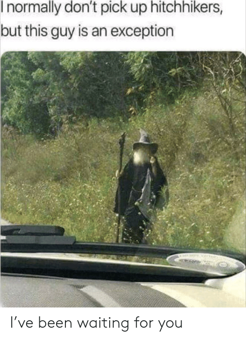 waiting for you: I normally don't pick up hitchhikers,  but this guy is an exception I've been waiting for you