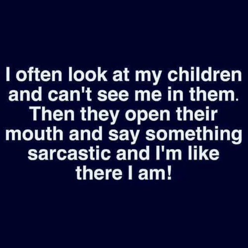 Children, Dank, and 🤖: I often look at my children  and can't see me in them.  Then they open their  mouth and say something  sarcastic and I'm like  there l am!
