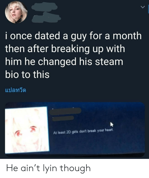 Girls, Steam, and Break: i once dated a guy for a month  then after breaking up with  him he changed his steam  bio to this  แปลทวีต  At least 2D girls don't break your heart He ain't lyin though