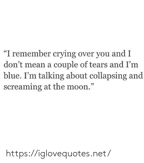 "couple: ""I remember crying over you and I  don't mean a couple of tears and I'm  blue. I'm talking about collapsing and  screaming at the moon."" https://iglovequotes.net/"