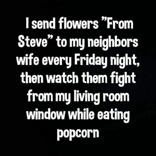 """Friday, Memes, and Flowers: I send flowers """"From  Steve"""" to my neighbors  wife every Friday night,  then watch them fight  from my living room  window while eating  popcorn"""