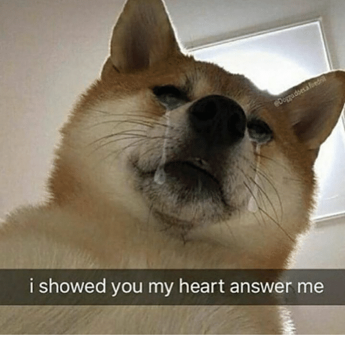 Heart, Answer, and You: i showed you my heart answer me