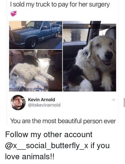 Animals, Beautiful, and Love: I sold my truck to pay for her surgery  FB@DANKMEMEOLDGY  Kevin Arnold  @itskevinarnold  You are the most beautiful person ever Follow my other account @x__social_butterfly_x if you love animals!!