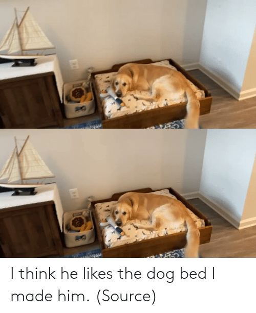 I Made: I think he likes the dog bed I made him. (Source)