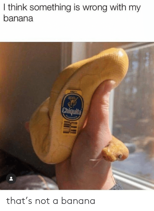 Banana: I think something is wrong with my  banana  A11  Chiquita that's not a banana