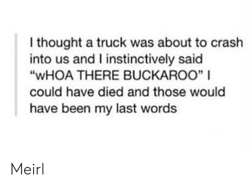 "Last Words, Thought, and MeIRL: I thought a truck was about to crash  into us and I instinctively said  ""WHOA THERE BUCKAROO"" 