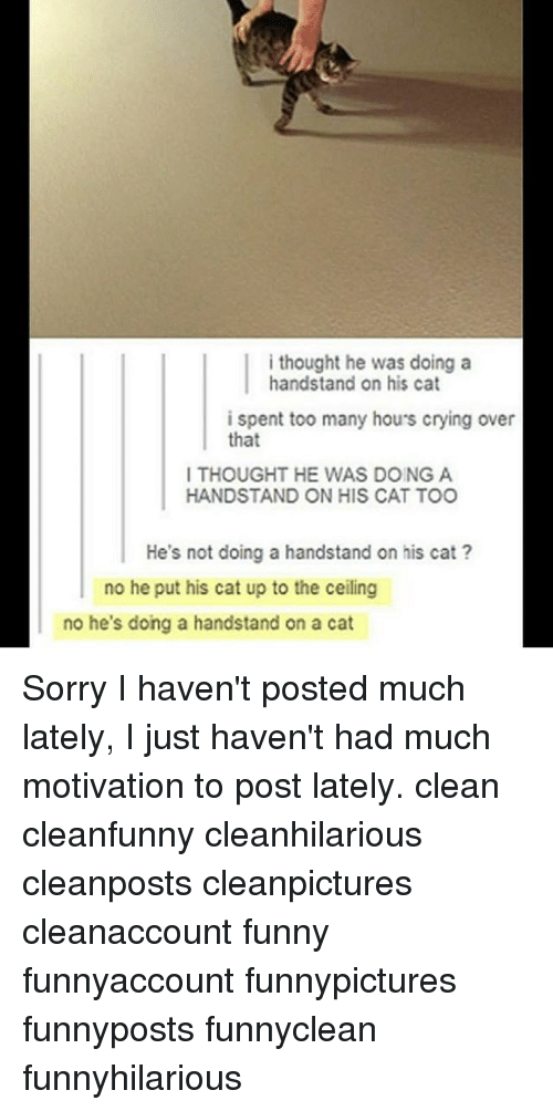 Crying, Funny, and Memes: i thought he was doing a  handstand on his cat  i spent too many hou's crying over  that  I THOUGHT HE WAS DOING A  HANDSTAND ON HIS CAT TOO  He's not doing a handstand on his cat?  no he put his cat up to the ceiling  no he's dong a handstand on a cat Sorry I haven't posted much lately, I just haven't had much motivation to post lately. clean cleanfunny cleanhilarious cleanposts cleanpictures cleanaccount funny funnyaccount funnypictures funnyposts funnyclean funnyhilarious