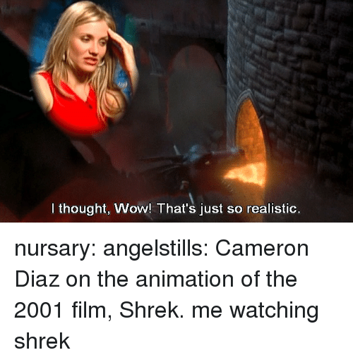 Shrek, Tumblr, and Wow: I thought, Wow! That's just so realistic. nursary:  angelstills:  Cameron Diaz on the animation of the 2001 film, Shrek.  me watching shrek