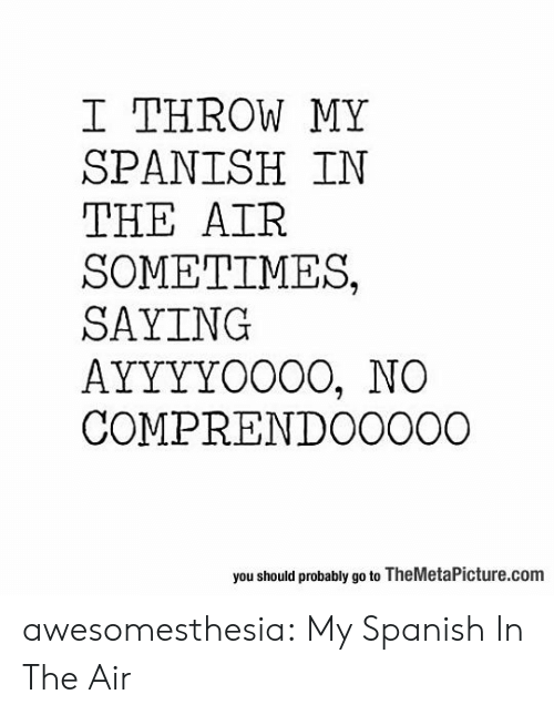 Spanish, Tumblr, and Blog: I THROW MY  SPANISH IN  THE AIR  SOMETIMES,  SAYING  AYYYYOO0O, NO  COMPRENDO0000  you should probably go to TheMetaPicture.com awesomesthesia:  My Spanish In The Air