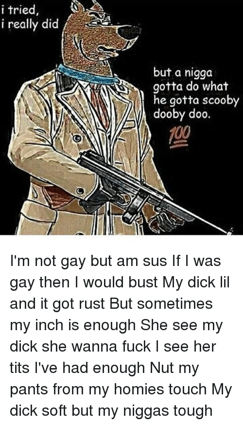 Memes, 🤖, and Rust: i tried  i really did  but a nigga  gotta do what  he gotta scooby  dooby doo. I'm not gay but am sus If I was gay then I would bust My dick lil and it got rust But sometimes my inch is enough She see my dick she wanna fuck I see her tits I've had enough Nut my pants from my homies touch My dick soft but my niggas tough
