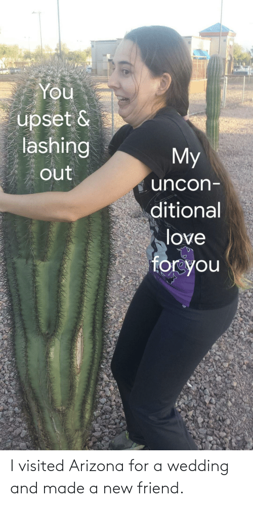 Wedding: I visited Arizona for a wedding and made a new friend.