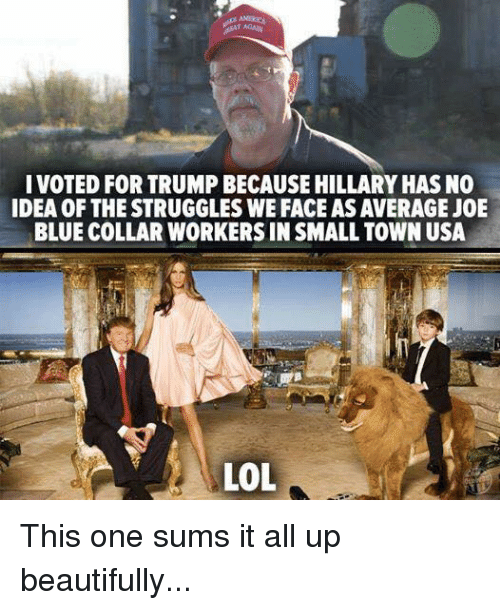 Memes, Struggle, and Blue: I VOTED FORTRUMPBECAUSE HILLARY HAS NO  IDEA OF THE STRUGGLES WE FACE AS AVERAGEJOE  BLUE COLLAR WORKERS IN SMALL TOWN USA This one sums it all up beautifully...