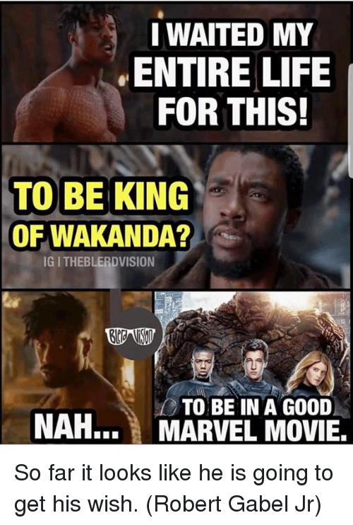 Life, Memes, and Good: I WAITED MY  ENTIRE LIFE  FOR THIS!  TO BE KING  OF WAKANDA?  IG I THEBLERDVISION  TO BE IN A GOOD  NAH... MARVEL MOVIE, So far it looks like he is going to get his wish. (Robert Gabel Jr)