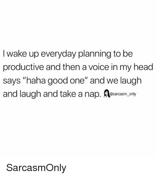 "Funny, Head, and Memes: I wake up everyday planning to be  productive and then a voice in my head  says ""haha good one"" and we laugh  and laugh and take a nap. esarcasm.conly SarcasmOnly"