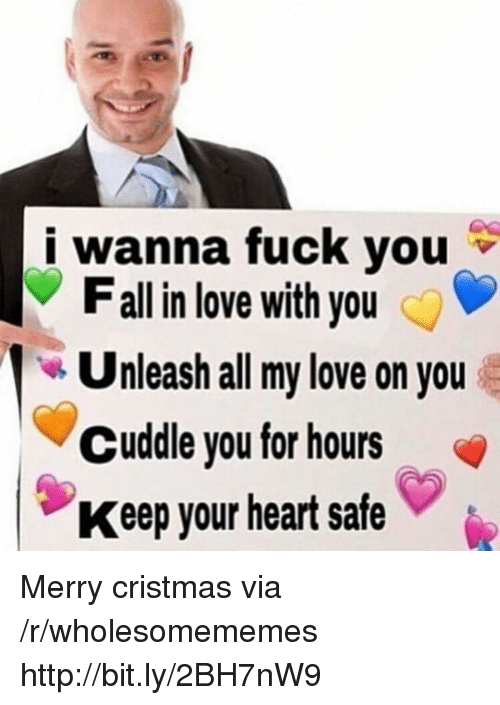 Fall, Fuck You, and Love: i wanna fuck you  Fall in love with you  Unleash all my love on you  Cuddle you for hours  Keep your heart safe Merry cristmas via /r/wholesomememes http://bit.ly/2BH7nW9
