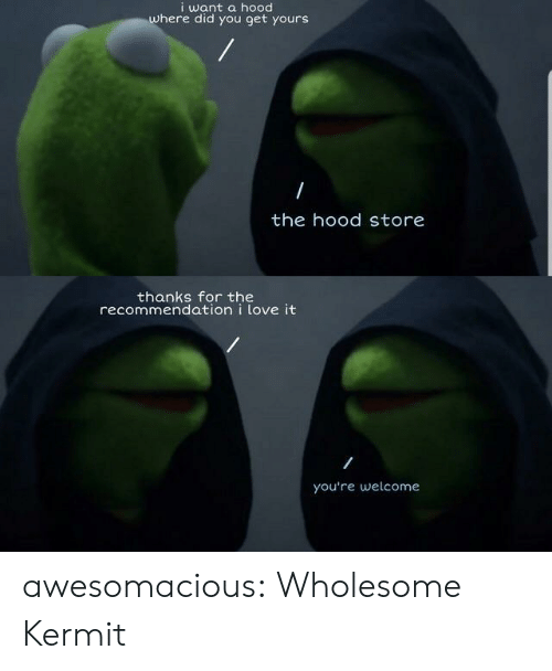 Love, The Hood, and Tumblr: i want a hood  where did you get yours  the hood store  thanks for the  recommendation i love it  you're welcome awesomacious:  Wholesome Kermit