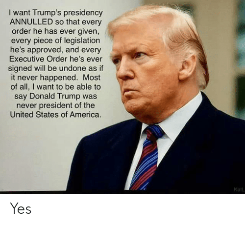 of the united states: I want Trump's presidency  ANNULLED so that every  order he has ever given,  every piece of legislation  he's approved, and every  Executive Order he's ever  signed will be undone as if  it never happened. Most  of all, I want to be able to  say Donald Trump was  never president of the  United States of America.  Kall Yes