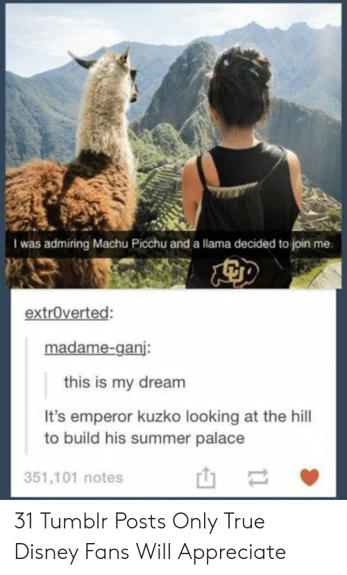 the hill: I was admiring Machu Picchu and a llama decided to join me.  extroverted:  madame-ganj:  this is my dream  It's emperor kuzko looking at the hill  to build his summer palace  351,101 notes  t1 31 Tumblr Posts Only True Disney Fans Will Appreciate