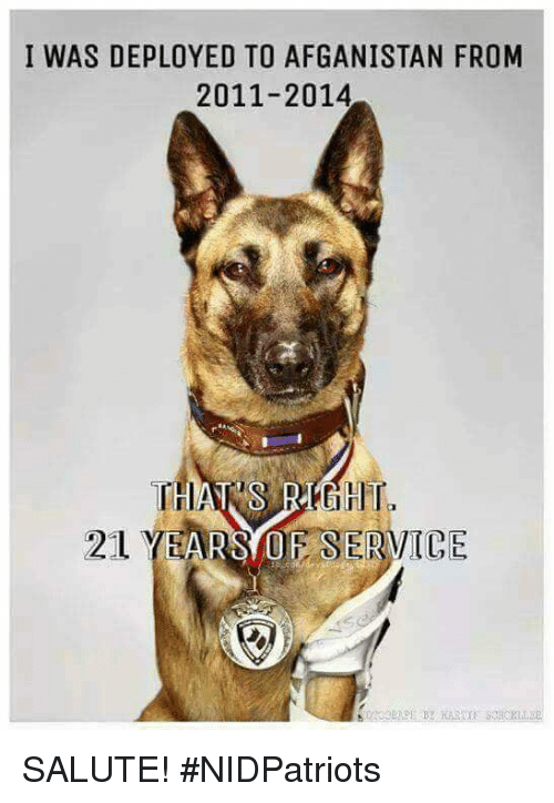 Memes, 🤖, and Service: I WAS DEPLOYED TO AFGANISTAN FROM  2011-2014  21 YEARS OF SERVICE SALUTE! #NIDPatriots