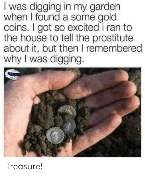 treasure: I was digging in my garden  when I found a some gold  coins. I got so excited i ran to  the house to tell the prostitute  about it, but then I remembered  why I was digging. Treasure!