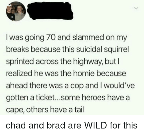 Homie, Heroes, and Squirrel: I was going 70 and slammed on my  breaks because this suicidal squirrel  sprinted across the highway, but l  realized he was the homie because  ahead there was a cop and I would've  gotten a ticket...some heroes have a  cape, others have a tail chad and brad are WILD for this