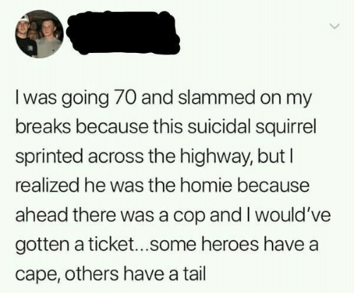 Homie, Heroes, and Squirrel: I was going 70 and slammed on my  breaks because this suicidal squirrel  sprinted across the highway, but I  realized he was the homie because  ahead there was a cop and I would 've  gotten a ticket...some heroes have a  cape, others have a tail