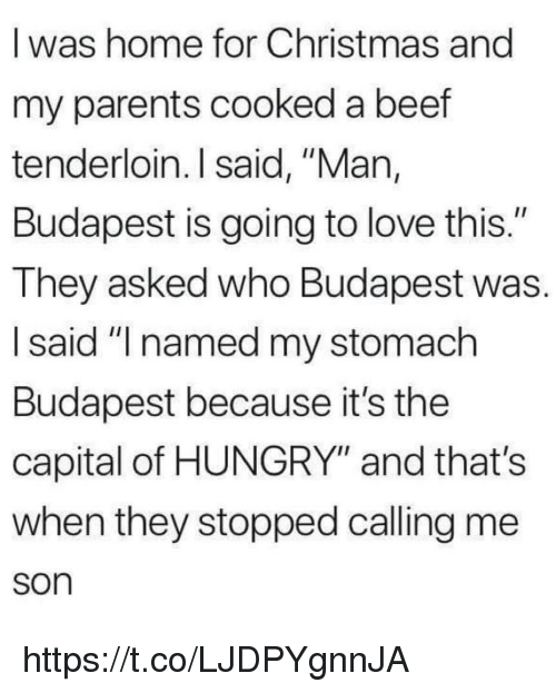 "Beef, Christmas, and Hungry: I was home for Christmas and  my parents cooked a beef  tenderloin. I said, ""Man,  Budapest is going to love this.""  They asked who Budapest was.  I said ""I named my stomach  Budapest because it's the  capital of HUNGRY"" and that's  when they stopped calling me  son https://t.co/LJDPYgnnJA"