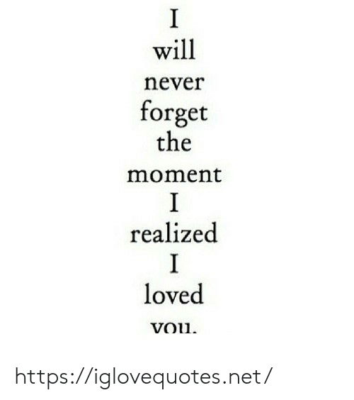 Never, Net, and Will: I  will  never  forget  the  moment  I  realized  I  loved  vou https://iglovequotes.net/