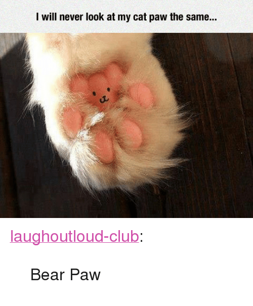"""Club, Tumblr, and Bear: I will never look at my cat paw the same.. <p><a href=""""http://laughoutloud-club.tumblr.com/post/173471985383/bear-paw"""" class=""""tumblr_blog"""">laughoutloud-club</a>:</p>  <blockquote><p>Bear Paw</p></blockquote>"""