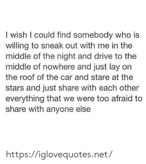 Drive, Stars, and The Middle: I wish I could find somebody who is  willing to sneak out with me in the  middle of the night and drive to the  middle of nowhere and just lay on  the roof of the car and stare at thee  stars and just share with each other  everything that we were too afraid to  share with anyone else https://iglovequotes.net/