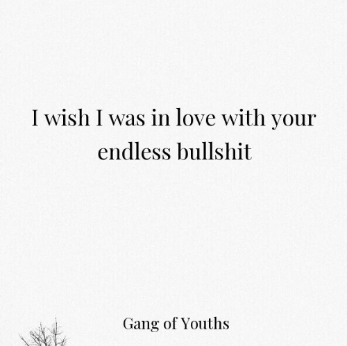 Love, Gang, and Bullshit: I wish I was in love with your  endless bullshit  Gang of Youths