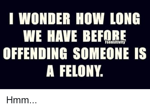 Memes, Wonder, and 🤖: I WONDER HOW LONG  WE HAVE BEFORE  OFFENDING SOMEONE IS  A FELONY.  Fsensitivity Hmm...