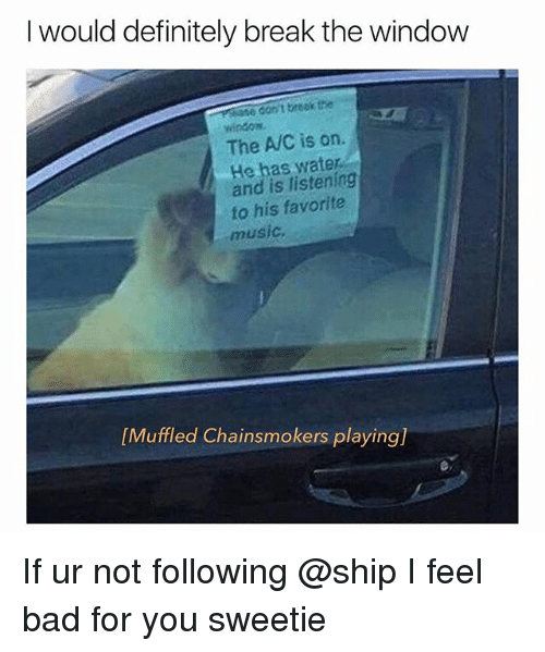 Bad, Definitely, and Music: I would definitely break the window  se don'i treak the  window  The A/C is on.  He has water  and is listening  fo his favorite  music  [Muffled Chainsmokers playing) If ur not following @ship I feel bad for you sweetie