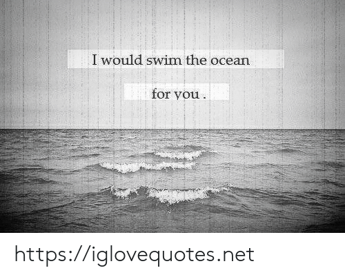 Ocean, Net, and You: I would swim the ocean  for you https://iglovequotes.net