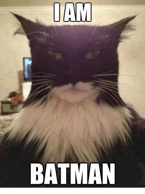 Iamed: IAM  BATMAN