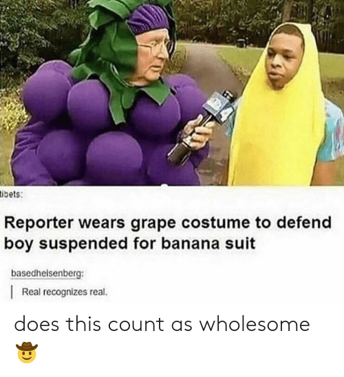 Banana, Wholesome, and Boy: ibets:  Reporter wears grape costume to defend  boy suspended for banana suit  basedhelsenberg  Real recognizes real. does this count as wholesome 🤠