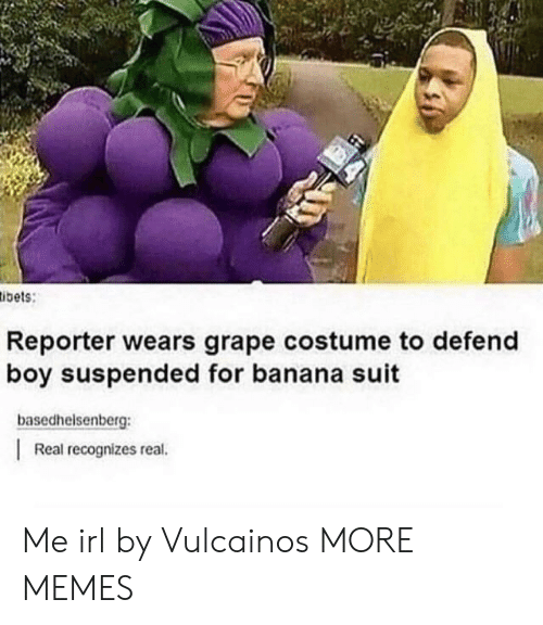 Dank, Memes, and Target: ibets:  Reporter wears grape costume to defend  boy suspended for banana suit  basedhelsenberg:  Real recognizes real. Me irl by Vulcainos MORE MEMES