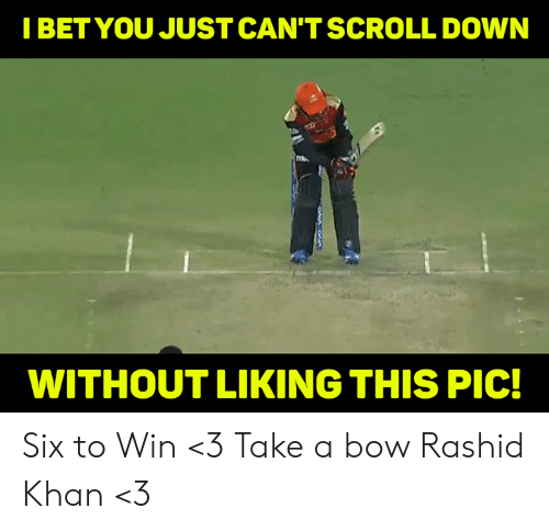 Memes, 🤖, and Khan: IBETYOU JUST CAN'TSCROLL DOWN  WITHOUT LIKING THIS PIC! Six to Win <3 Take a bow Rashid Khan <3