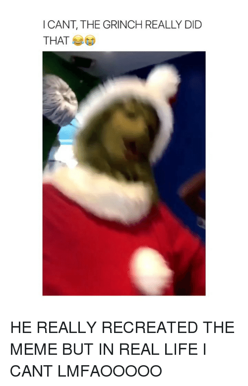 The Grinch, Life, and Meme: ICANT, THE GRINCH REALLY DID  THAT HE REALLY RECREATED THE MEME BUT IN REAL LIFE I CANT LMFAOOOOO
