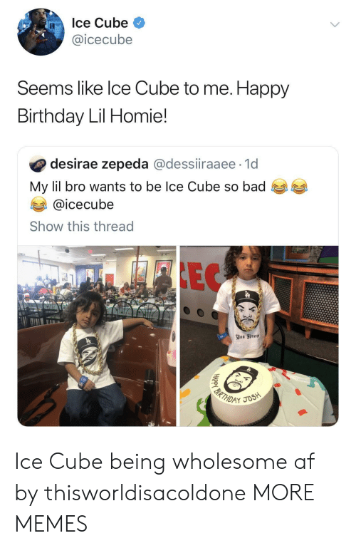 Af, Bad, and Birthday: Ice Cube  @icecube  Seems like lce Cube to me. Happy  Birthday Lil Homie!  desirae zepeda @dessiiraaee 1d  My lil bro wants to be Ice Cube so bad  @icecube  Show this thread Ice Cube being wholesome af by thisworldisacoldone MORE MEMES