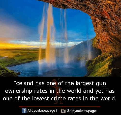 Crime, Memes, and Iceland: Iceland has one of the largest gun  ownership rates in the world and yet has  one of the lowest crime rates in the world.  团  /d.dyouknowpagel。@didyouknowpage