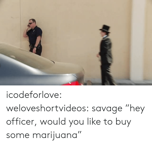 "Savage, Target, and Tumblr: icodeforlove: weloveshortvideos:  savage  ""hey officer, would you like to buy some marijuana"""