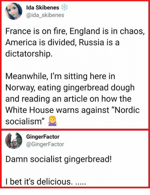 "Divided: Ida Skibenes  @ida_skibenes  France is on fire, England is in chaos,  America is divided, Russia is a  dictatorship.  Meanwhile, l'm sitting here in  Norway, eating gingerbread dough  and reading an article on how the  White House warns against ""Nordic  socialism""  GingerFactor  @GingerFactor  Damn socialist gingerbread!  I bet it's delicious."